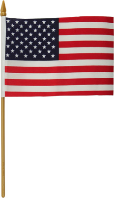 Harddrive Replacement Flag 4X6 No Mount 77-016
